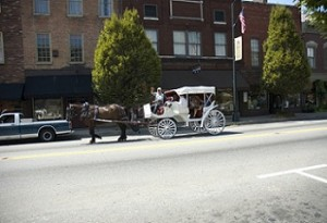 Bardstown Horse Carriage